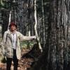 どろ亀さんのメッセージ~東京大学北海道演習林の森づくり【コラムリレー第19回】