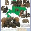 八雲町木彫り熊資料館企画展『浜田コレクション展』開催中