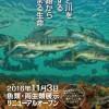 【釧路市立博物館】展示リニューアルオープン・11月3日入館無料