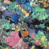 岩石薄片から読み解く地球の歴史【コラムリレー第15回】