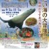 【釧路市立博物館】特別展「冷たい海の大冒険!!! 〜関勝則が写す北の海の生き物〜