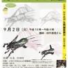昆虫スケッチ教室(9/2開催)【釧路市立博物館】