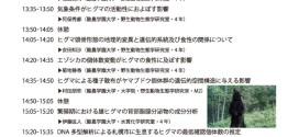 ヒグマ卒業論文発表会のお知らせ【浦幌町立博物館】