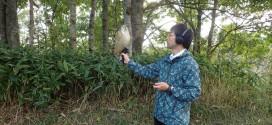 鳥を録る【コラムリレー07 第18回】