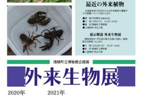 企画展「外来生物展」【浦幌町立博物館】