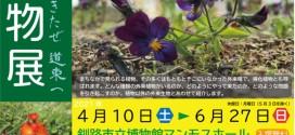 企画展「外来植物展〜はるばるきたぜ 道東へ」〔釧路市立博物館〕