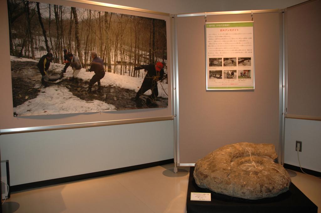 特別展「三笠一億年史~大地と文化のヒストリー~」の様子①