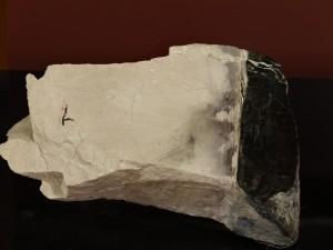 Fig.4 ロジン岩(日高山脈博物館 蔵).右の黒色部は蛇紋岩の部分.