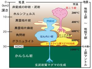 fig5_model