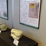 開催中の特別展・寄贈資料展「日高の翠の石-アオトラと日高ヒスイ-」 近年研究を行なっている日高ヒスイのブースです.