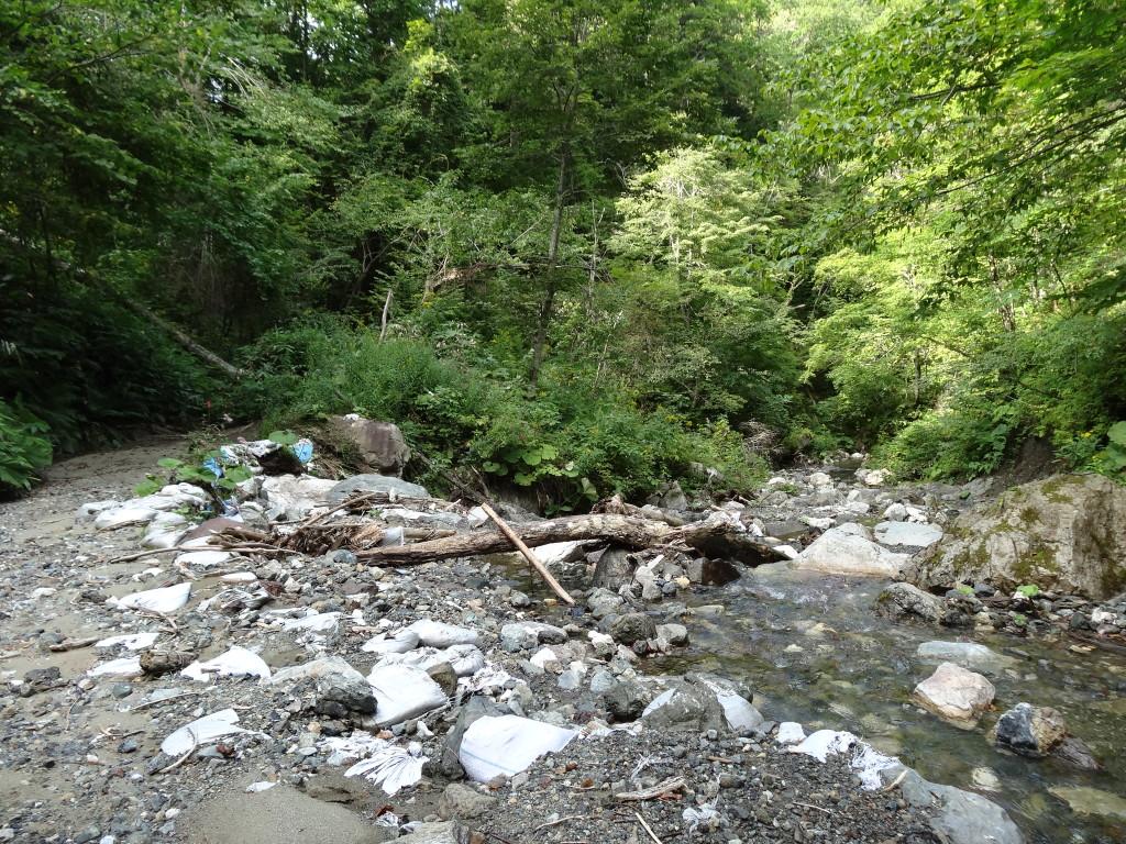 図4:右側が本流の三号の沢。左側がサンゴの滝へ続く導水道であるが、水は流れていない。周囲には土嚢袋が散乱している。(平成27年8月31日撮影)