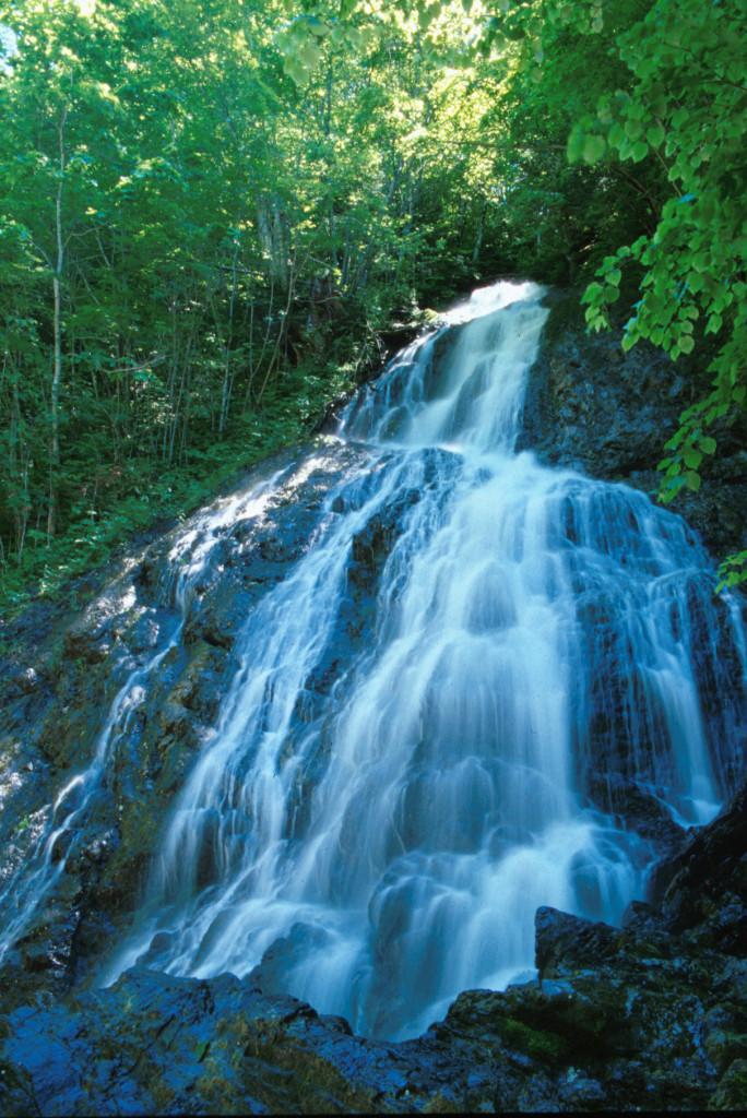 図2:サンゴの滝。平成10(1998)年ごろの姿。落差はおよそ26m。その姿は、「奔湍石を噛み飛沫霧散して万解の凉味を覚える」(日高村五拾年史)とのこと。