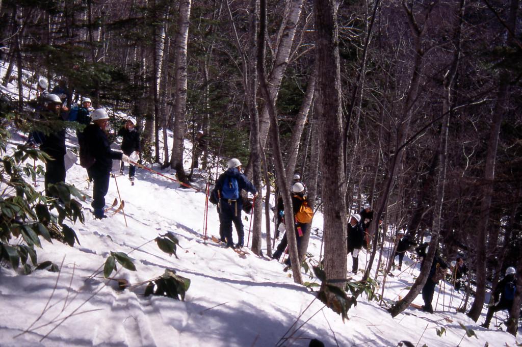 森の中で林分ごとに施業方針を検討する(撮影:倉橋昭夫さん)