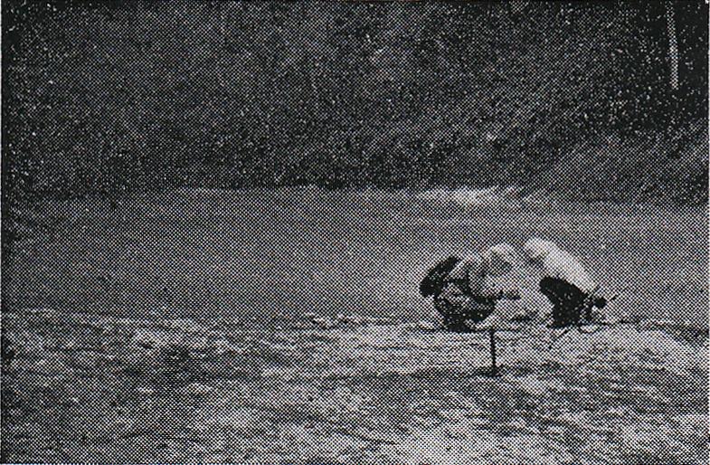 1953年7月撮影された白色沼(菊地・五十嵐 1954)