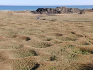 「シブノツナイ竪穴住居跡の俯瞰撮影(一つの窪みは一辺5m前後)」