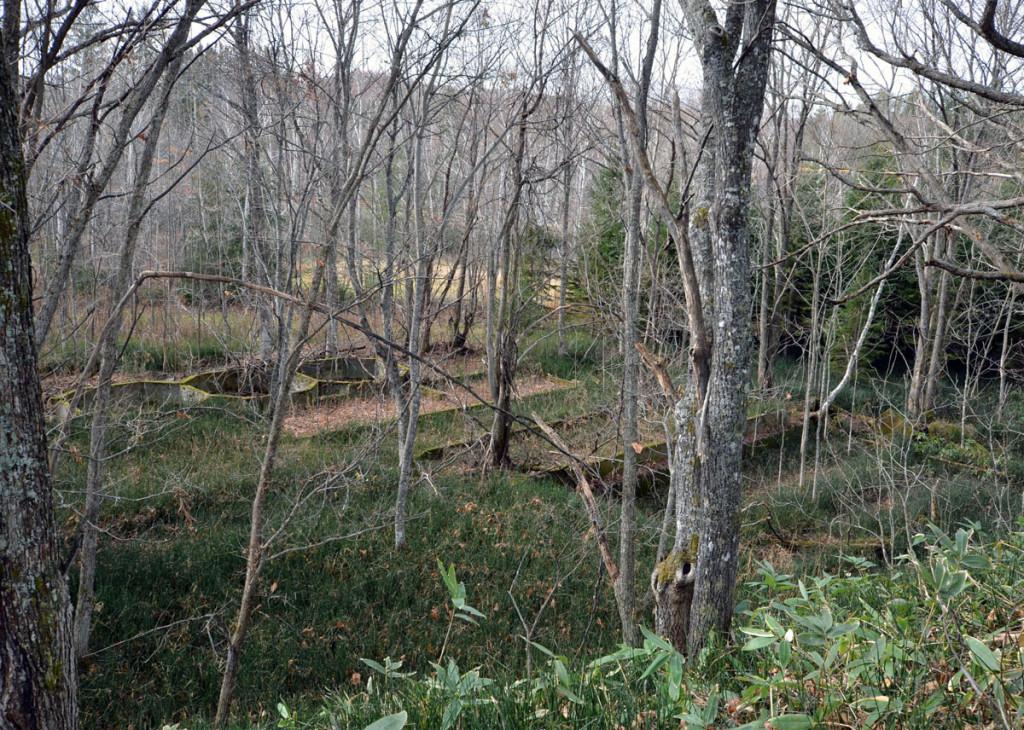 写真11 工場の基礎跡