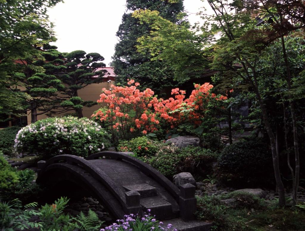 ツツジ咲く梅村庭園