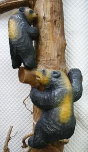 加藤の初期の熊