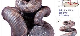 """""""驚くべき日本の石""""から読み解かれた進化の不思議【コラムリレー第45回】"""